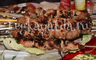 Шашлык из свинины: самый вкусный маринад